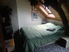 Foto 24 : eengezinswoning te 9506 NIEUWENHOVE (België) - Prijs € 459.000