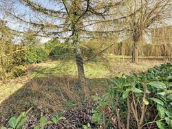 Image 3 : terrain à bâtir à 1350 JAUCHE (Belgique) - Prix 85.000 €
