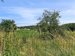 Foto 4 : bouwgrond te 3010 KESSEL-LO (België) - Prijs € 360.000