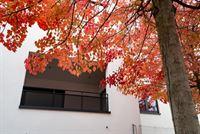 Image 38 : Appartement à 4053 EMBOURG (Belgique) - Prix