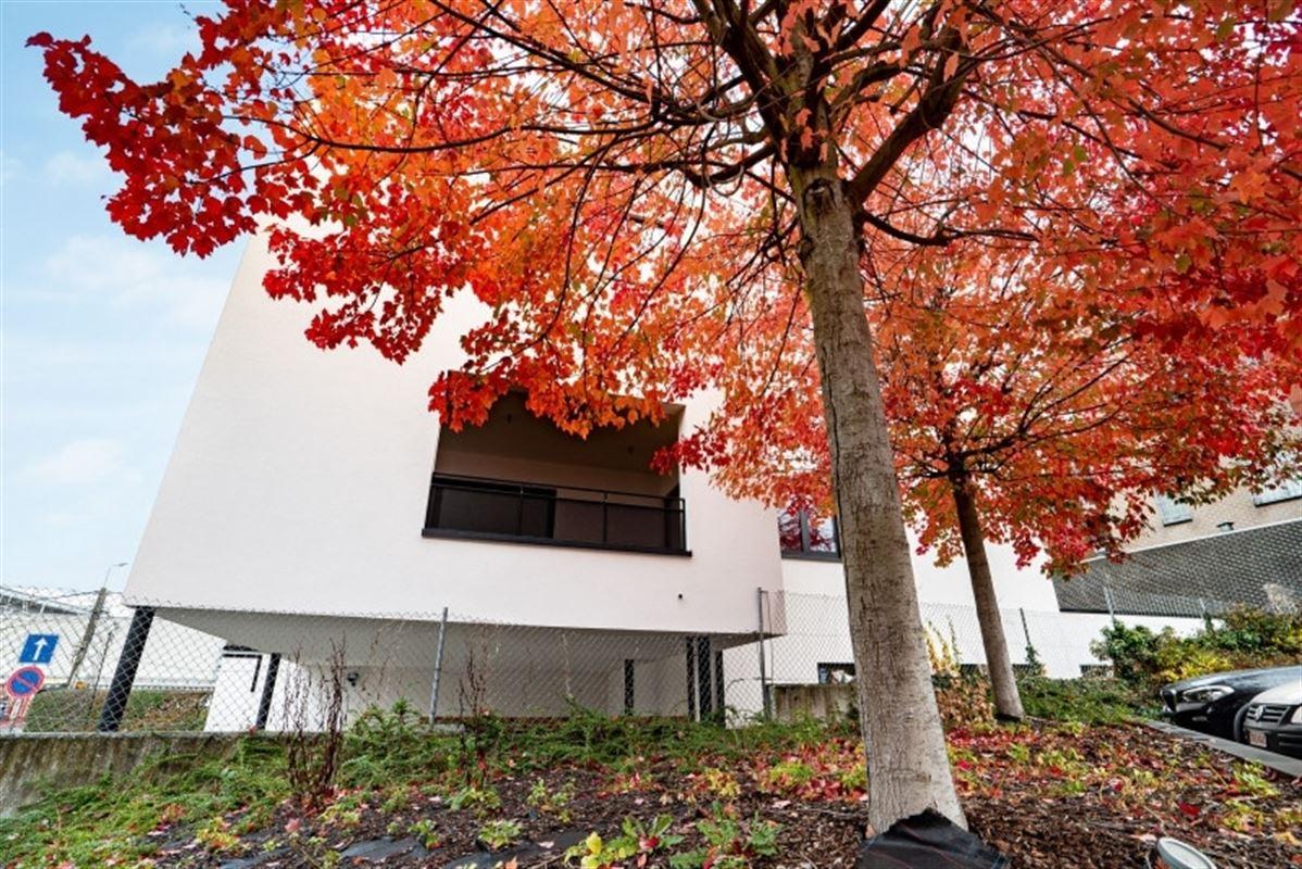 Image 37 : Appartement à 4053 EMBOURG (Belgique) - Prix