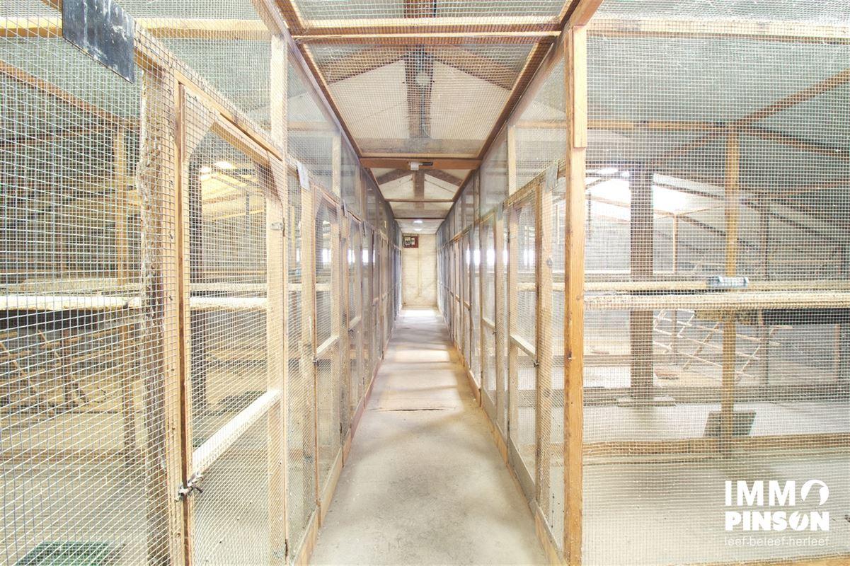 Image 20 : Farm à OOSTVLETEREN (8640) - Belgique