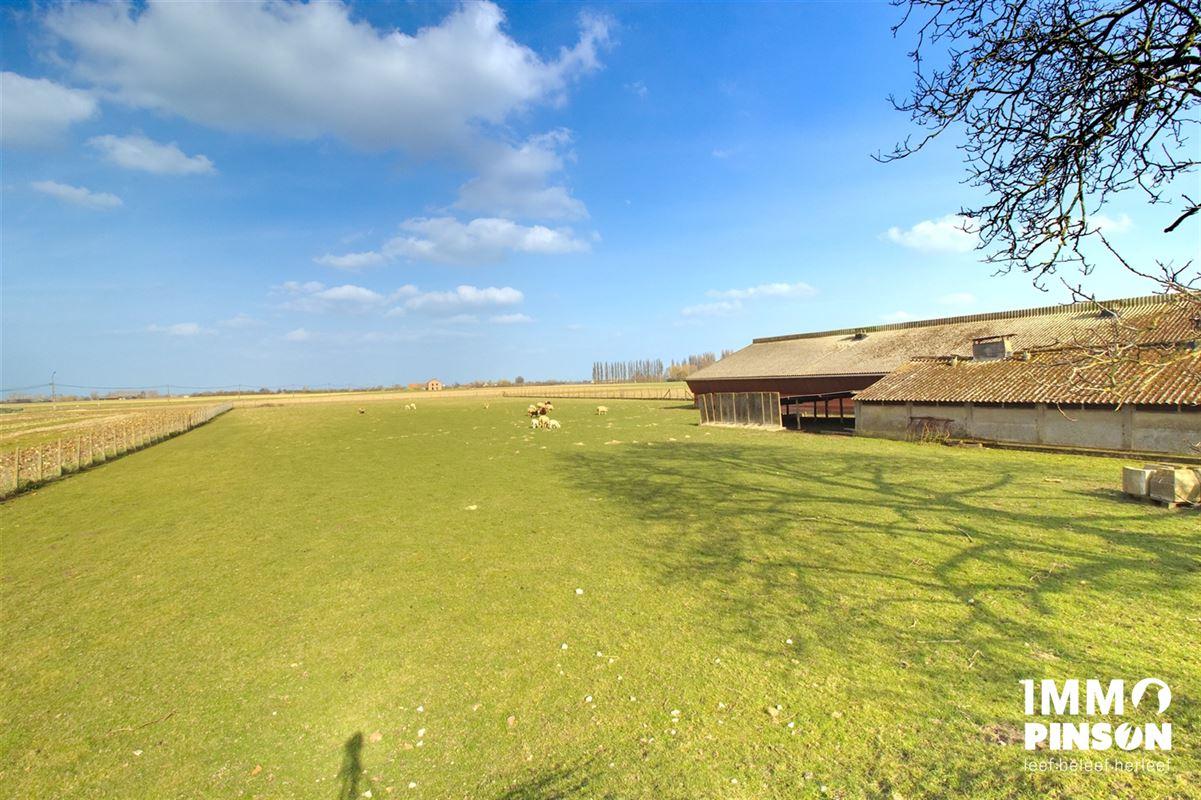 Image 29 : Farm à OOSTVLETEREN (8640) - Belgique
