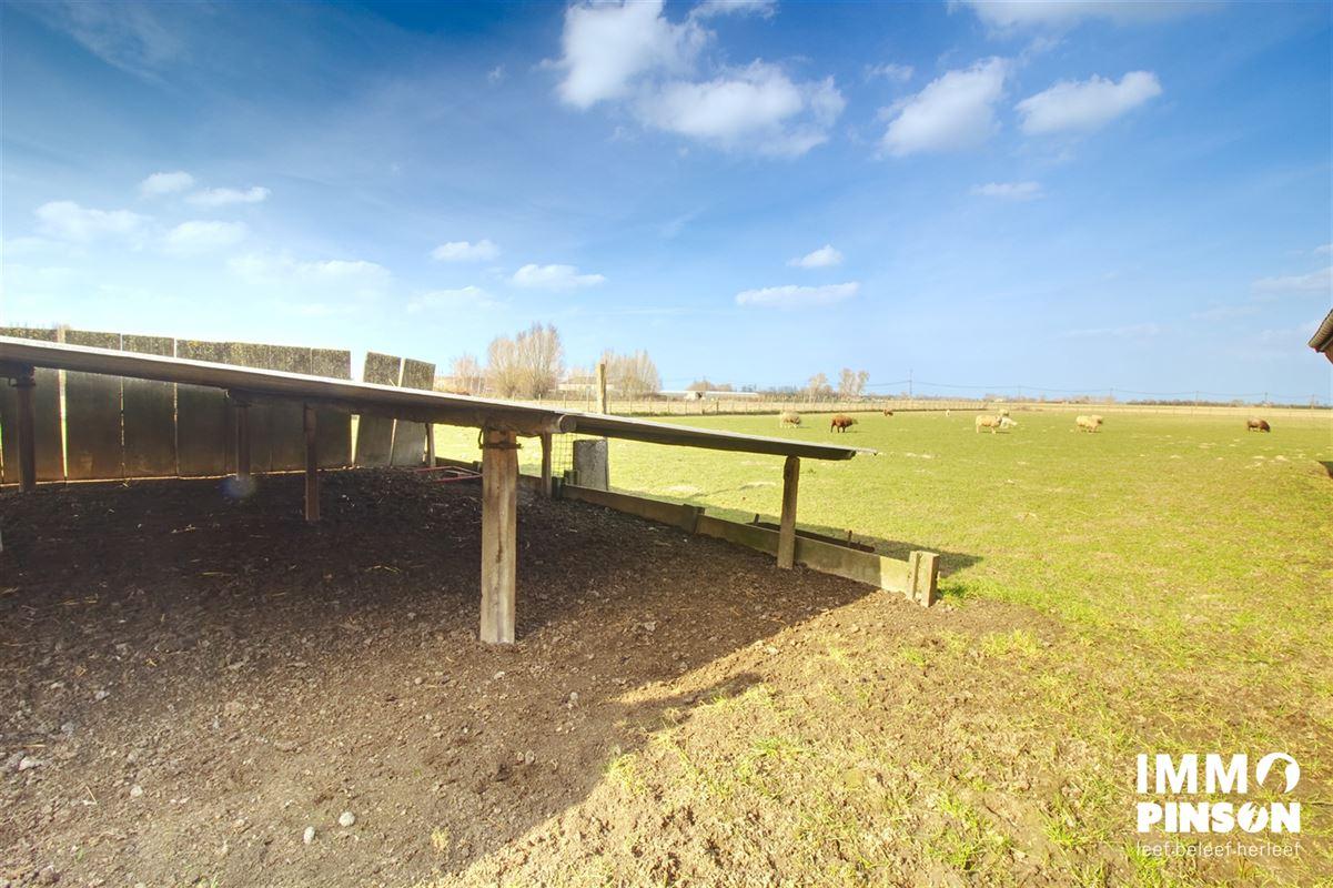 Foto 28 : boerderij te OOSTVLETEREN (8640) - België