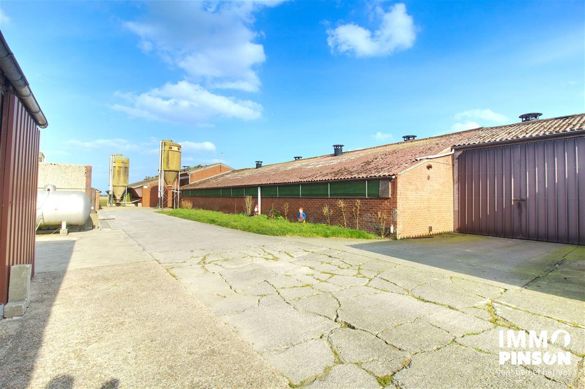 Image 24 : Farm à OOSTVLETEREN (8640) - Belgique