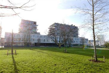 service flats te 2000 ANTWERPEN (België) - Prijs € 1.395