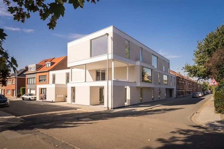 Real estate project : RUBENS IN MUIZEN (2812) - Price